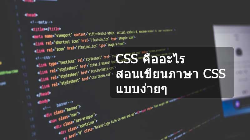 Teaching-to-write-CSS-language-news-site